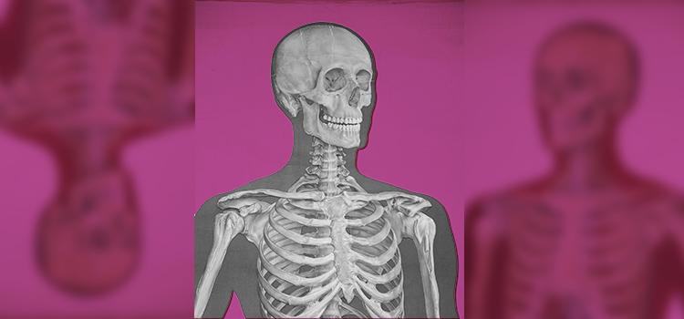 huesos-grande-2